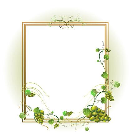 illustraition: Vector illustraition of elegant floral frame