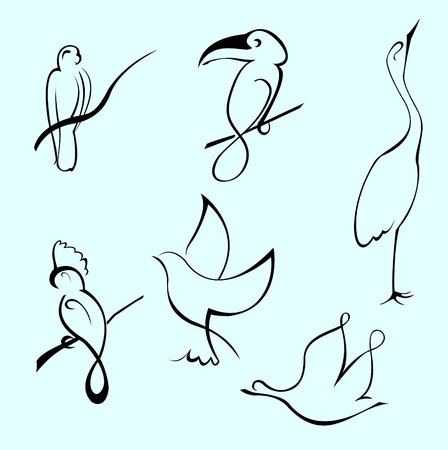gull: Vector illustraition of Bird Design Set made with simple line only