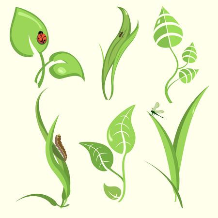 hormiga hoja: Ilustraci�n vectorial de las hojas de la planta con dise�o divertido insectos