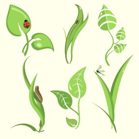 Vector illustration set of design plant leaves with funny insects Vector