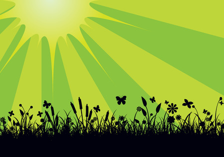 Vector illustration of Peaceful landscape with Silhouette of flowers, grass and   butterfly    Vector