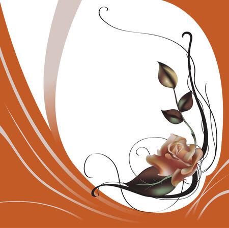 buds: Vector illustraition of elegant beautiful rose Illustration