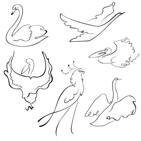 deslizamiento: Vector illustraition del conjunto de dise�o de las aves de hecho con s�lo la l�nea simple