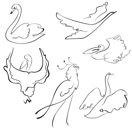 gull: Vector illustraition of Birds Design Set made with simple line only