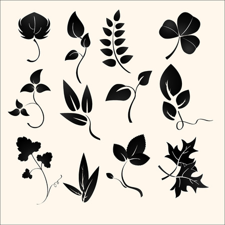 Vector illustration set of design plants silhouettes Vector