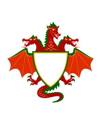 Illustration of dragon Shield  Emblem Vector