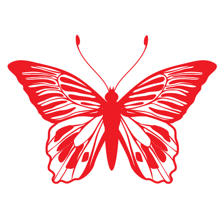 peacock butterfly:  Illustration of detailed butterfly silhouette.