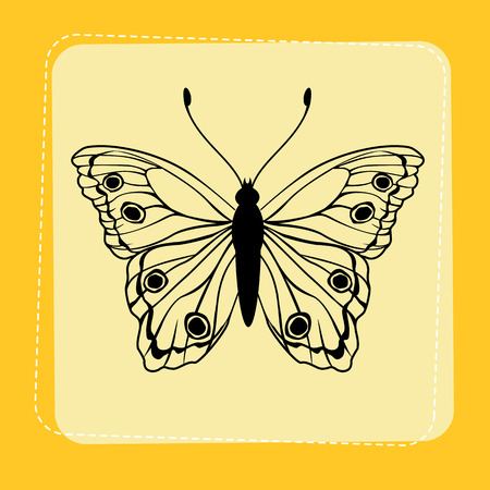 Illustration of detailed Brightly coloured butterfly on funky yellow frame. Vector