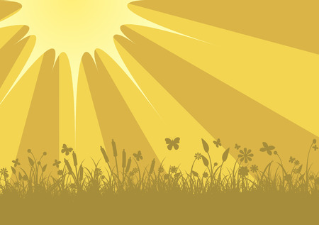 illustration of Peaceful sunset with Silhouette of flowers, grass and   butterfly      Vector