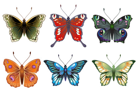 Vector Illustration set of detailed Brightly coloured butterflies. Stock Vector - 9036706