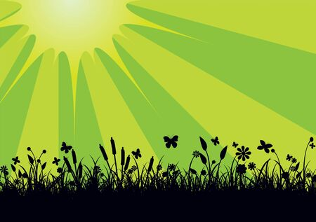 lea: illustration of Peaceful landscape with Silhouette of flowers, grass and   butterfly    Stock Photo