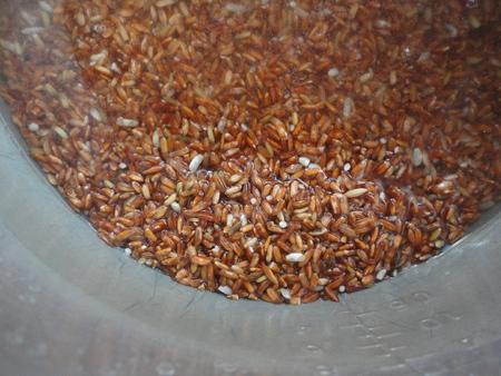 het wassen van rode rijst Stockfoto