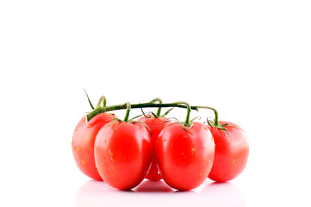 Branch of fresh red tomatoes on isolated white backround. Stock Photo