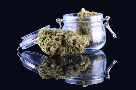 Medicinal marijuana cannabis in a bottle. Cannabis hemp products in jar. Cannabis weed bud isolated on black background