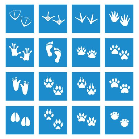 animals footprint icon vector design symbol