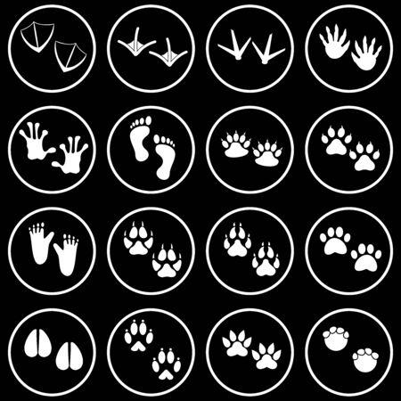 animals footprint icon vector design symbol