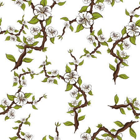 Seamless pattern of flowering branches of apple on a white background. Vector illustration