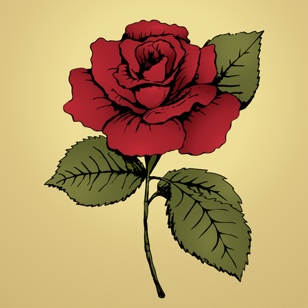 addition: Flower red rose. Hand drawing. Bud, red petals, green leaves and stem on a yellow background. Card, print, decor element, textile design, fabric design, addition, decoration. Vector illustration