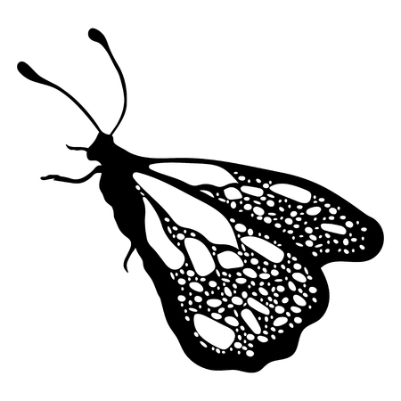 Butterflies Set, Monochrome, Coloring Book, Black And White ...
