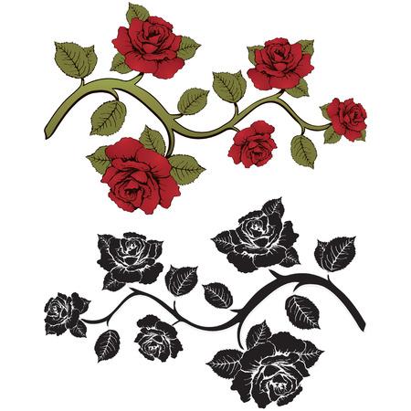 rosas rama de la flor. Conjunto de rosas rojas y negras ramas. Estampado floral. Ornamento con las rosas. Marco floral, tarjeta de la flor, frontera de las flores, la bandera, la decoración. Fondo floral del vector