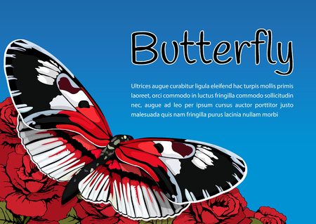contrasting: Butterfly on flowers of red roses on a blue sky background and space for text, vector banner, card, poster Illustration