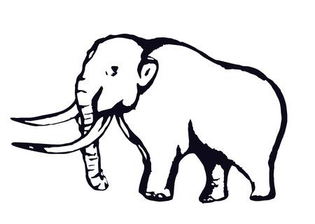 Contour mammouth, dessin à la main au contour, croquis, isolé sur fond blanc. Illustration vectorielle