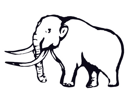 Mammoth outline, contour hand drawing, sketch, isolated on a white background. Vector illustration Illustration