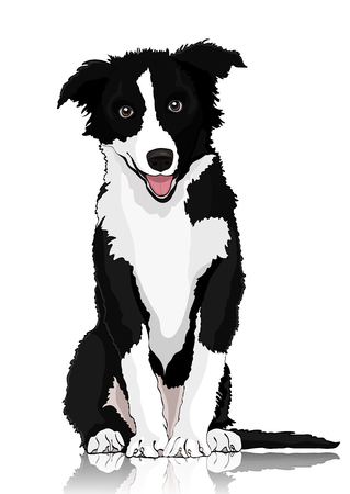 Dog vector drawing. Black and white cartoon shaggy dog full-length isolated on white background