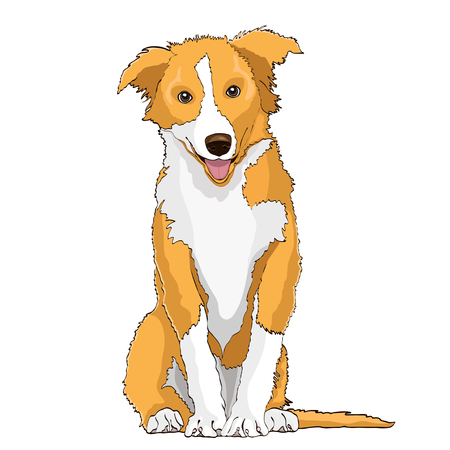 Yellow dog, symbol of the year 2018, vector drawing. Yellow white cartoon shaggy dog full-length isolated on white background Illustration