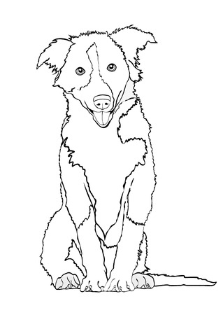 Dog vector outline drawing, sketch, coloring book. Black and white contour cartoon shaggy dog full-length isolated on white