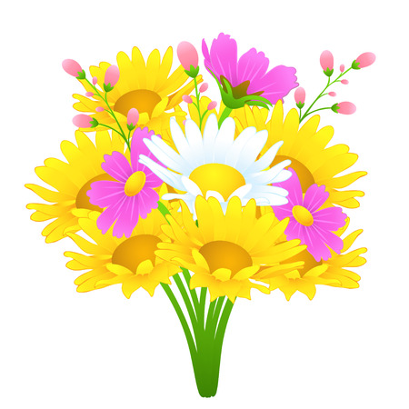 Bouquet of colorful flowers, vector drawing. Bright meadow buds yellow and white chamomile, cosmos pink flowers, delicate not blossoming flowers on a branch and stalks isolated on white background