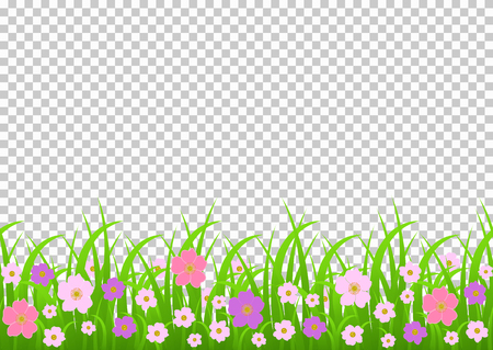 Flowers and grass border, pink meadow flowers and green grass on a transparent background, vector illustration, greeting card decoration element, summer graphic drawing, cover, banner