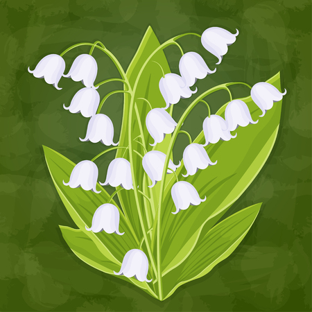 Lily of the valley, spring bouquet of delicate flower, vector illustration. White buds forest flowers bluebells, stalks and leaves isolated on green textural artistic background, card, design element