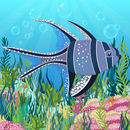 Algae drawing, underwater world background. Violet yellow fish with white spots floating on illuminated bottom of ocean. Vector illustration