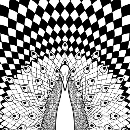 Black white peacock with flowing tail on geometric background, coloring, bird, banner template, covers, posters, monochrome cartoon drawing, stylized abstract graphic picture. Vector illustration