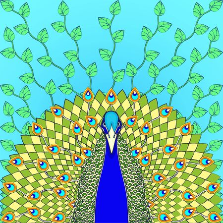 Peacock with flowing tail colorful cartoon drawing, graphic print. Beautiful green bird with big open tail with peacock bright feathers, isolated on blue background with plants. Vector illustration 向量圖像