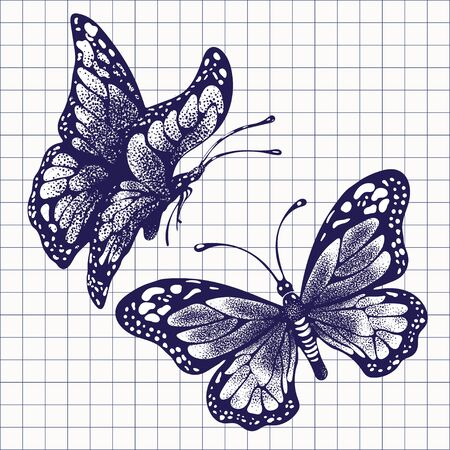 Ink butterflies, hand drawing ballpoint pen drawn in checkered notebook, set doodle insect sketch. Blue painted graphic butterfly with wings closed and open on white background. Vector illustration