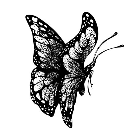 Ink butterfly hand drawing, doodle insect sketch, monochrome, print, tattoo. Painted in black inky graphic butterfly with closed wings in profile isolated on white background. Vector illustration