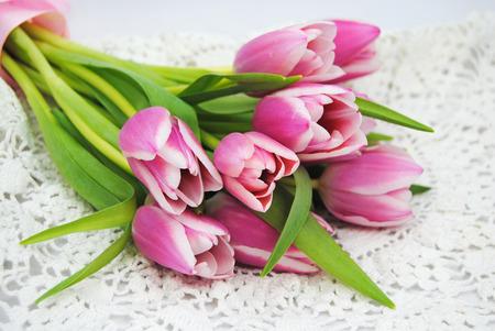 Mooie tulpen in het voorjaar