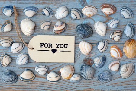 seafruit: Empty copyspace for you label tag on old wooden background with sea shells