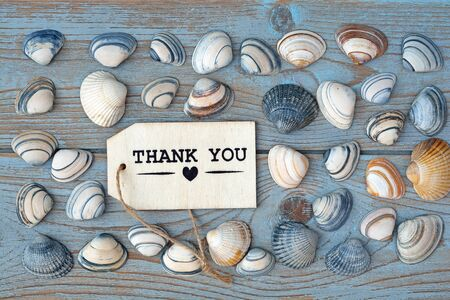seafruit: Empty copyspace thank you label tag on old wooden background with sea shells
