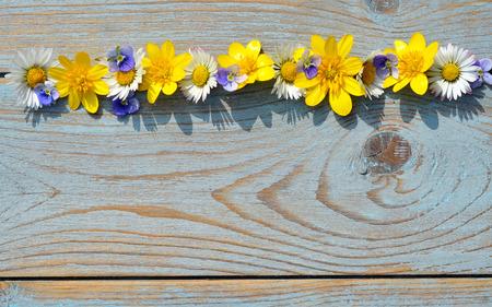 champ de fleurs: Contexte de vieux gris bleu nou� bois avec la ligne rang�e de marguerites et renoncules fleurs des champs
