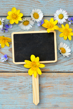 field of flowers: bluegray wooden shelves background with black empty copyspace chalkboard axis label tag and field flowers Stock Photo