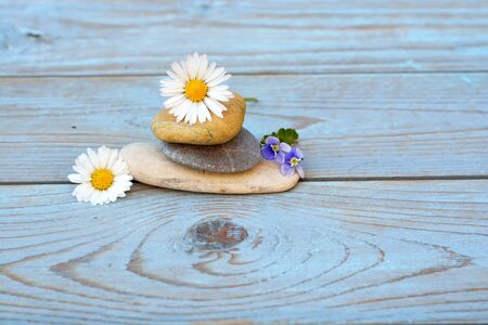 emptying: Zen stones on ablue gray old wooden background with daisies field flowers