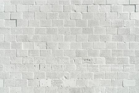 forground: white painted bricks wall with empty copy space