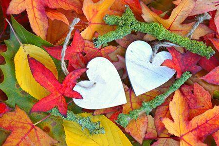 Een heleboel kleurrijke herfst bladeren in de herfst met een houten hart vorm hart met lege kopie ruimte Stockfoto