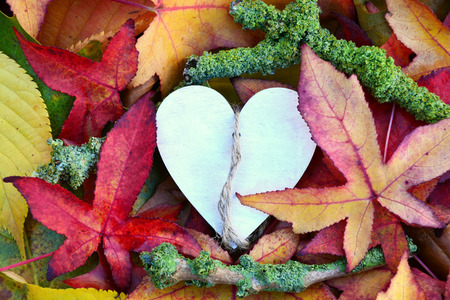 grievance: A lot of colorful autumn leaves in the fall with a wooden heart shape heart with empty copy space