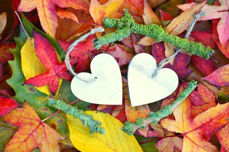 corazon roto: A lot of colorful autumn leaves in the fall with a wooden heart shape heart with empty copy space