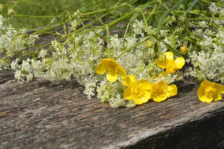 fond en bois avec des fleurs des champs
