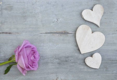 whitewash: Pink purple rose on a gray background with old wooden whitewash heart shape tags with empty copyspace Stock Photo